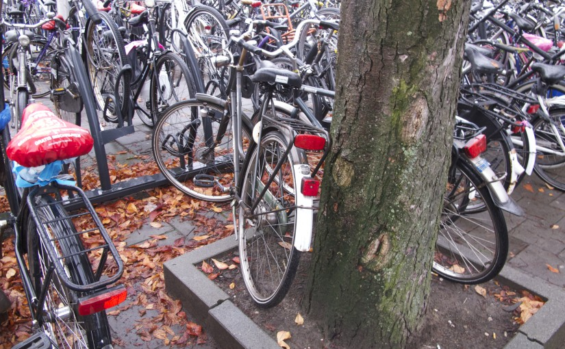 Improving bicycle parking at train stations